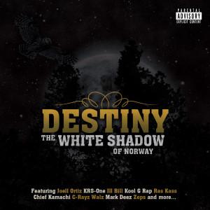 Destiny (2010)