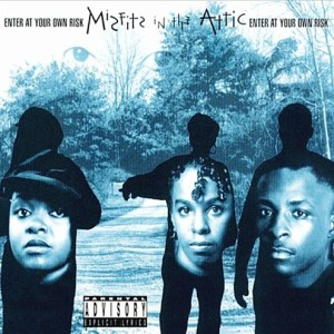 Misfits In The Attic Enter At Your Own Risk Ug Rap